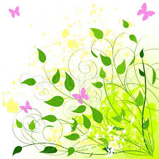 beautiful green summer background place for copy text stock