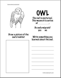 owl habitat worksheet information about owls first grade