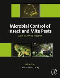 Mi Bolivia Amada Los Sue 209 Os M 193 S Grandes De Los - microbial control of sugarcane pests pdf download available