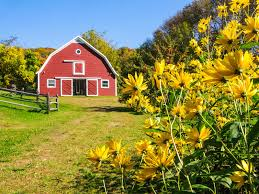 Vermont Wedding Venues Vermont Barn Weddings