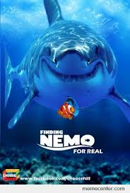 Finding Meme - finding nemo for real by ben meme center