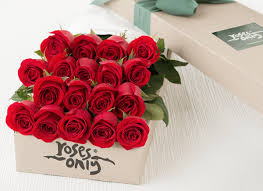 roses delivery roses delivery fresh flowers ny online florist roses only