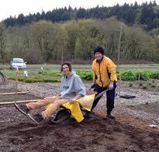 native plant nurseries internships friends of buford park and mount pisgah