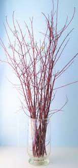 dogwood branches 3037 decorative by outdoorindoordecor
