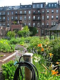 Houston Urban Gardeners - 86 best urban sustainability images on pinterest urban gardening