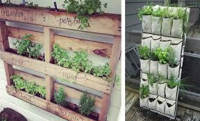 gem se pflanzen balkon gärtnern auf balkonien avocado store
