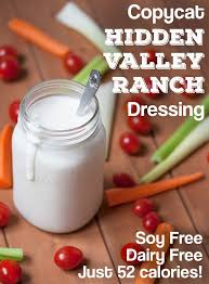 Free Dinner Ideas Best 25 Dairy Free Meals Ideas On Pinterest Dairy Free Lactose