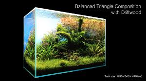 adaview 90cm aquarium layout triangle composition with driftwood