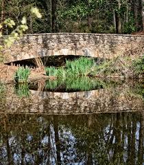 Botanical Gardens South Carolina Bridge At Botanical Gardens Stock Photo Image Of Cathy