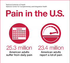nih analysis shows americans are in pain nccih