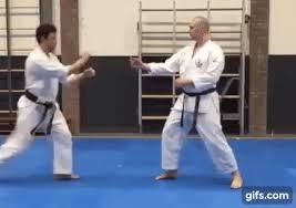 imagenes gif karate defence against long range kick wado ryu karate animated gif