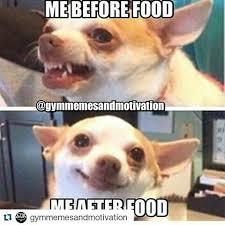 Meme Diet - diet christmas meme festival collections