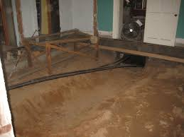 digging deeper in the crawlspace project 563