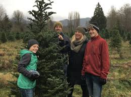 experience whatcom county christmas tree farms whatcomtalk