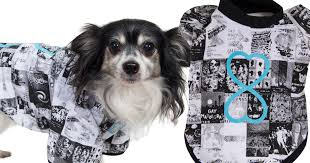 mardi gras gear you can now dress your pooch in official mardi gras gear