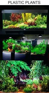 japanese aquascape aquascaping plants u2013 homedesignpicture win