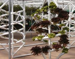 Ikea Krydda Vaxer Usa Ikea To Introduce Cute Countertop Hydroponic Garden Kit Treehugger