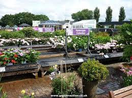 228 best garden center images on pinterest garden centre garden