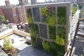 garten sichtschutz ideen balkon sichtschutz windschutz ideen vertikaler garten garten
