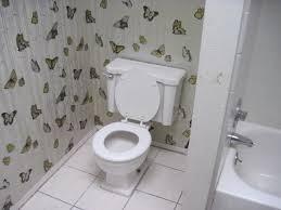 butterflies in the bathroom u2013 ugly house photos