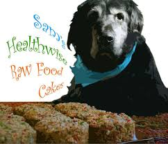 10 best natural homemade raw dog food recipes photos and videos