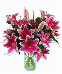 pink lilies would like to send pink lilies bouquet delivery for
