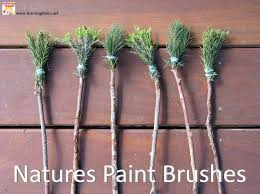 Make Textured Paint - textured painting with nature u0027s paint brushes textured painting
