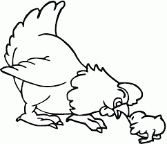 coloring page of a chicken coloring home