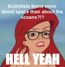 Mermaid Meme - image 207398 hipster mermaid hipster ariel know your meme