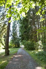 Lincoln Park Seattle Parks Hikes by 23 Best West Seattle Images On Pinterest Beautiful Places