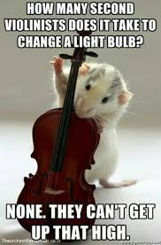 Violin Meme - pin by dowellzrul on music pinterest orchestras music humour