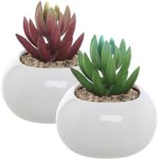 Ceramic Succulent Planter by Turquoise U0026 Gray Abstract Design Ceramic Succulent Plant Flower