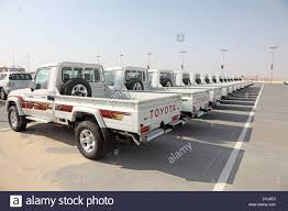 brand new toyota brand new toyota land cruiser pickup trucks as award for camel