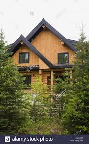 log home styles cottage style log home with black trim through evergreen trees in