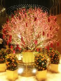 New Years Decorations Adelaide by 17 Best Images About Cny On Pinterest Cherry Blossoms Red