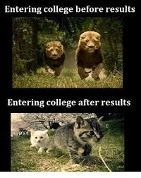 College Memes - college memes latest content page 1 jilljuck college life