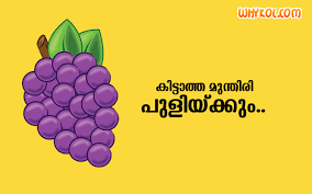 Wedding Quotes Malayalam Romantic Marriage Quotes In Malayalam