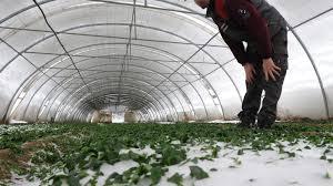 chambre agriculture herault intempéries dans l hérault la chambre d agriculture fait les comptes
