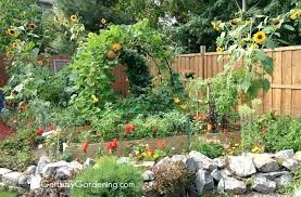 vegetable gardens designs vegetable garden layout for small spaces