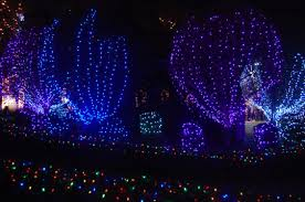 where to see the best christmas lights u2014and a lobster trap menorah
