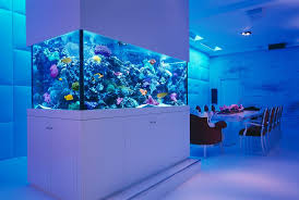 marvelous dining room decorating ideas with aquarium pillars and