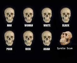 Biology Meme - it s biology not bigotry kaiserreich