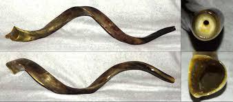 shofar store shofar store buy top quality shofars expertly handcrafted