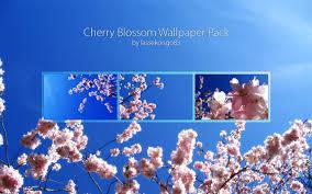 cherry blossom wallpaper pack by lassekongo83 on deviantart