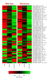 identification of gene modules associated with low temperatures