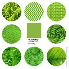 pantone colour of the year 2017 greenery pantone color of the year 2017 trends 2017 pinterest