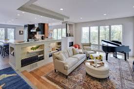 define livingroom beautiful the elephant in the living room living room idea