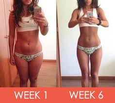 how to lose weight following the dukan diet rules project next