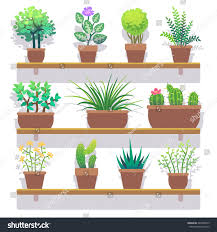 indoor plants pots flat icons set stock vector 422580475
