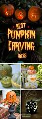 different ideas for pumpkin carving 60 easy cool diy pumpkin carving ideas for halloween 2017
